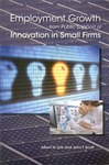 Employment Growth from Public Support of Innovation in Small Firms by Albert N. Link and John T. Scott